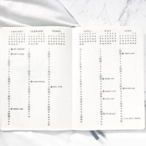 bullet journal minimalista vista anual