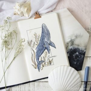 bullet journal animales junio