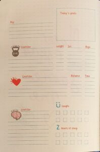 bullet journal tiger 3