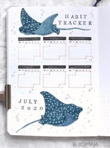 trackers verano 6