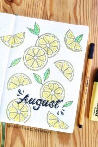 bullet journal verano agosto